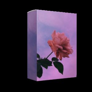 Paul Fix – Emotions (Loop Kit)