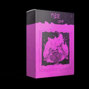 Paul Fix – Fuego (Loop Kit)