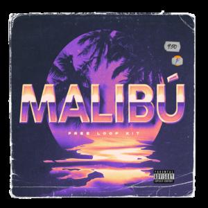 Paul Fix – Malibu (Loop Kit)